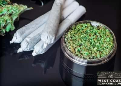 West-Coast-Cannabis-Club-Dispensary-Picture-09.jpg