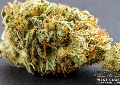 West-Coast-Cannabis-Club-Dispensary-Picture-11.jpg